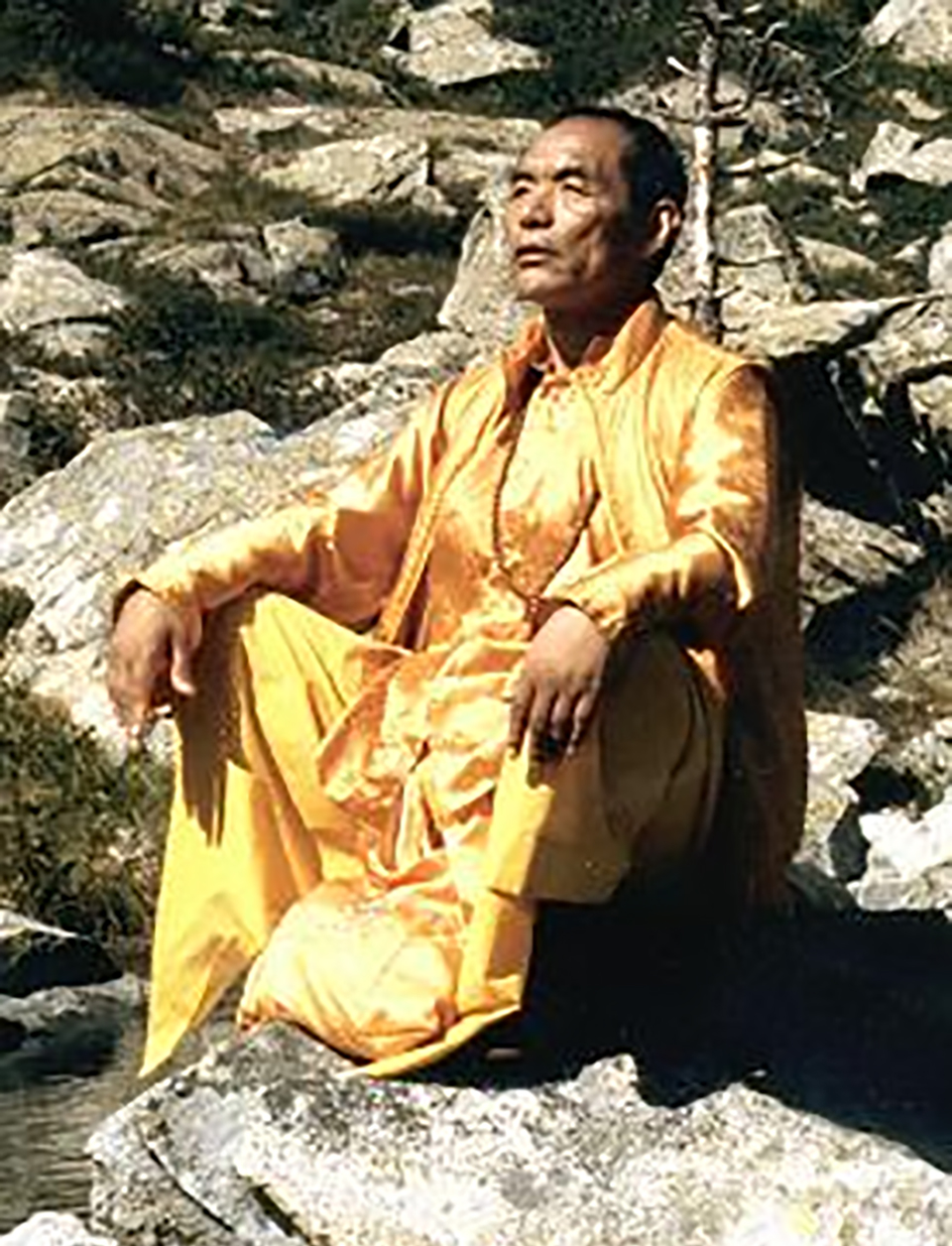 Nyoshul Khen Rinpoche